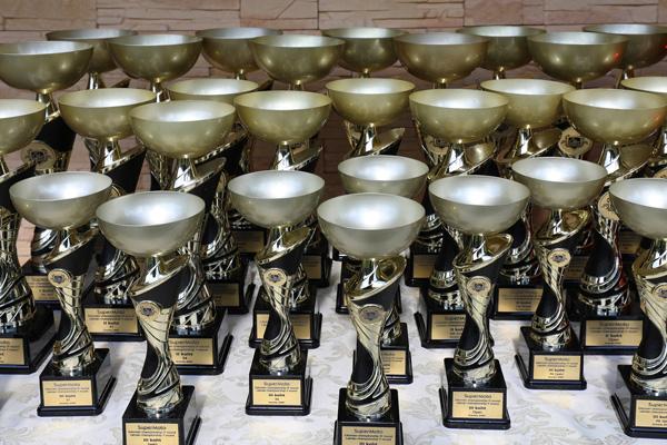 karikad medalid klaasmeened auhinnad