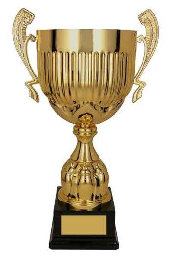 auhinnad karikad