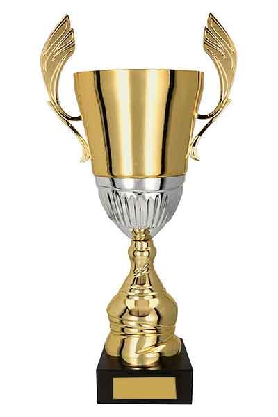 auhinnad karikad karikas